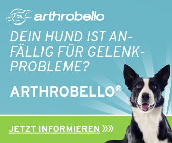 Dein Hund ist anfällig für Gelenkprobleme? Jetzt informieren auf arthrobello.com