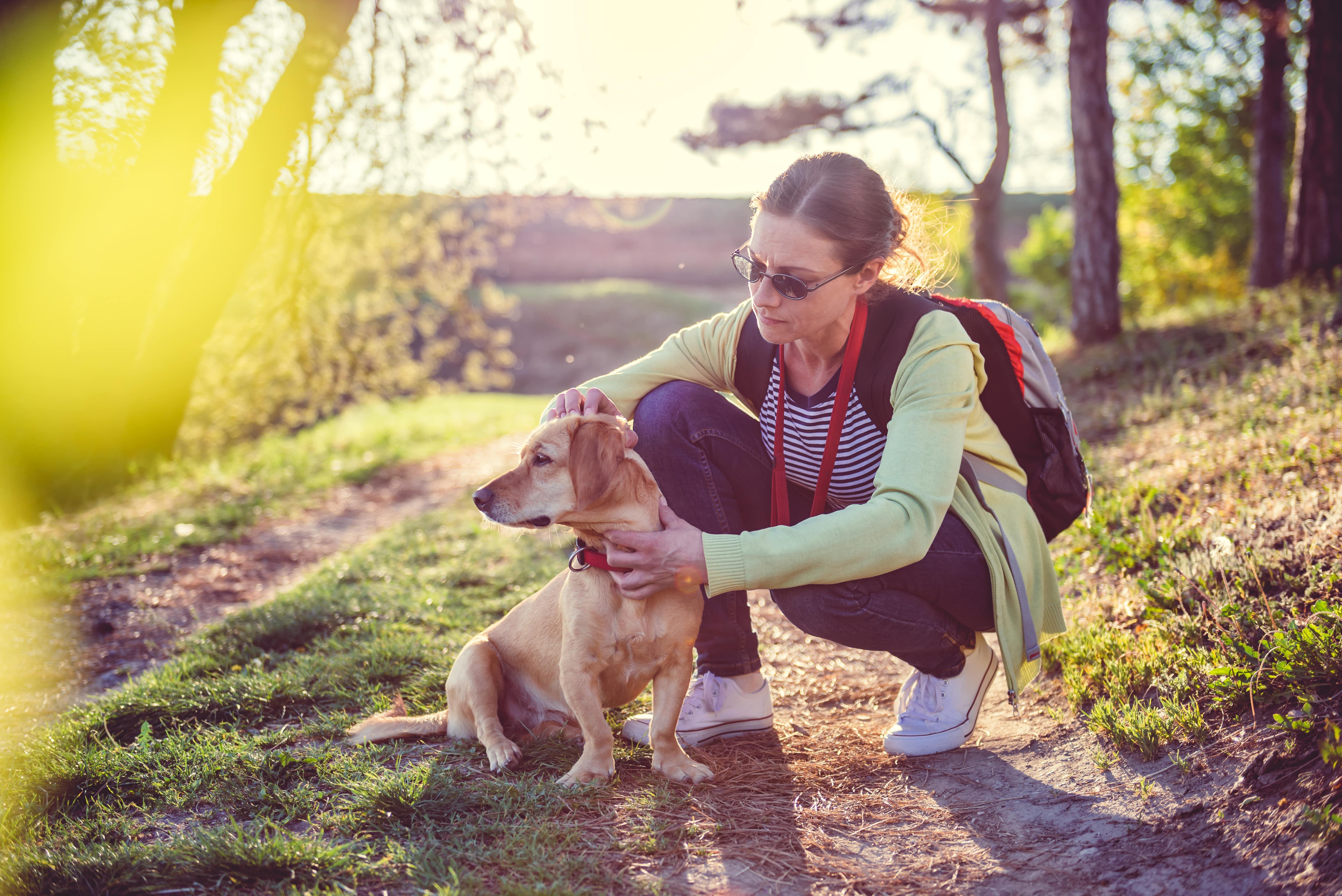Frau sucht ihren Hund nach zecken ab