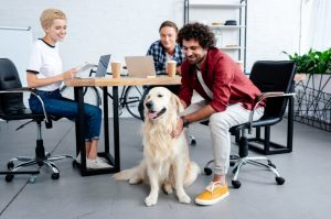 Golden Retriever sitzt vor einem Schreibtisch und wird von drei Mitarbeitern in einem Büro gestreichelt