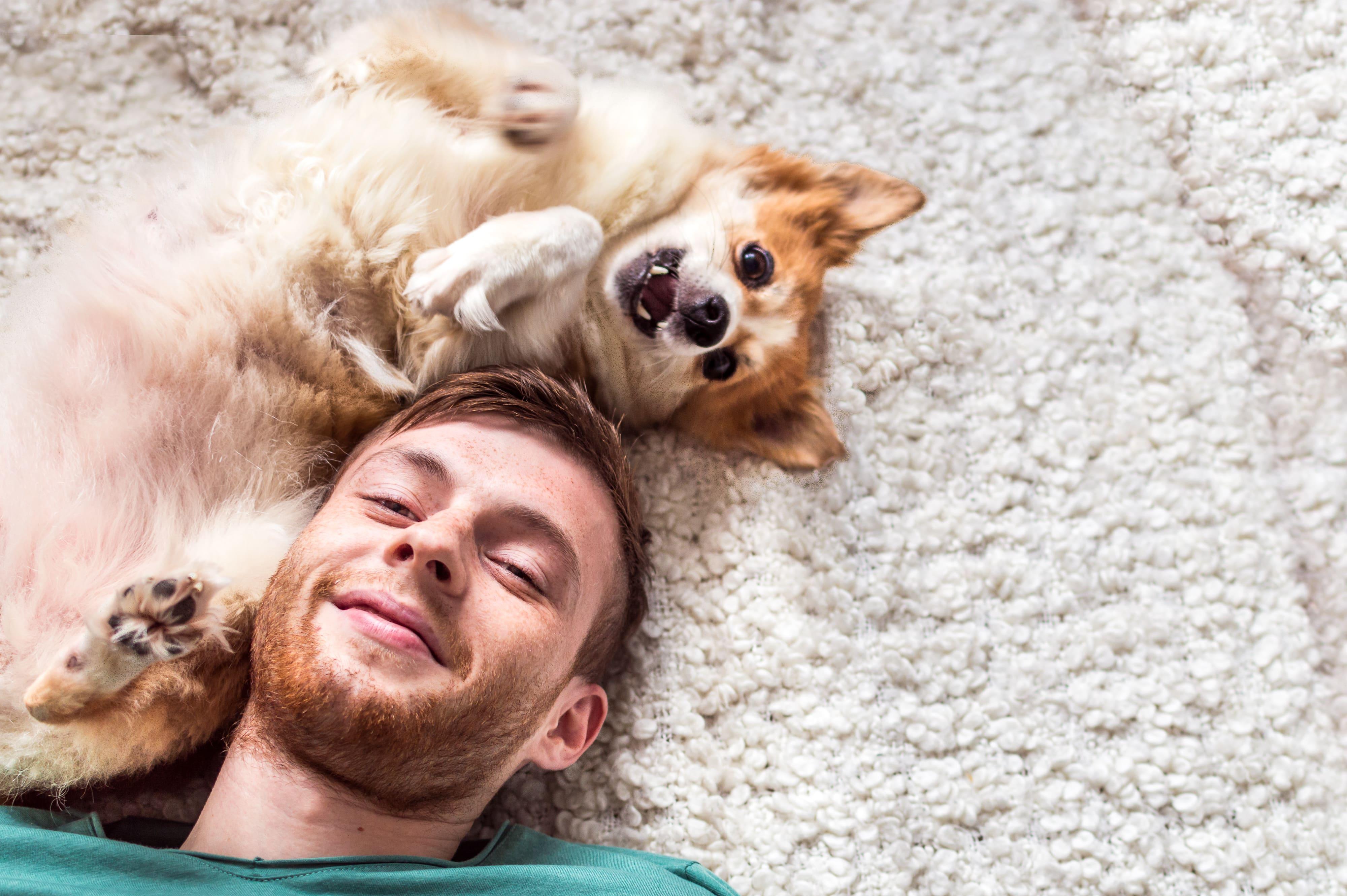Junger Mann und kleiner Hund liegen Kopf an Kopf auf einem Teppich
